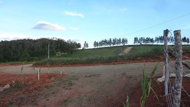 Ref. 2385 - Chácara de 5.854,14 m² com tanque e Luz - Contenda - Foto 13