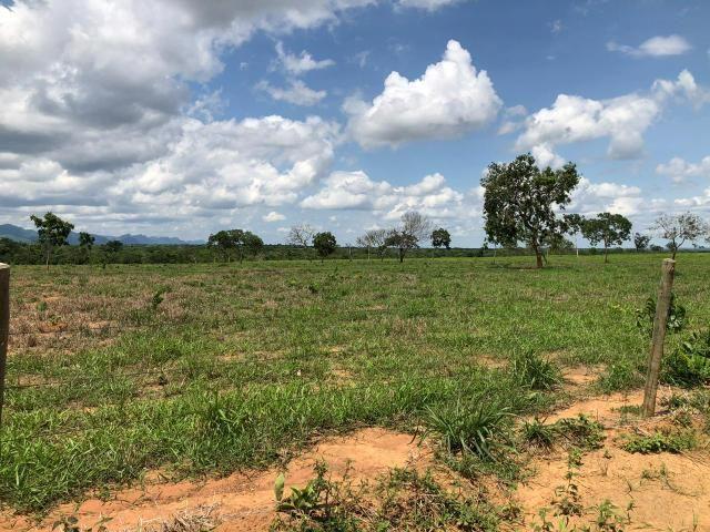 Fazenda 1.163 hectares em Livramento MT - Foto 8