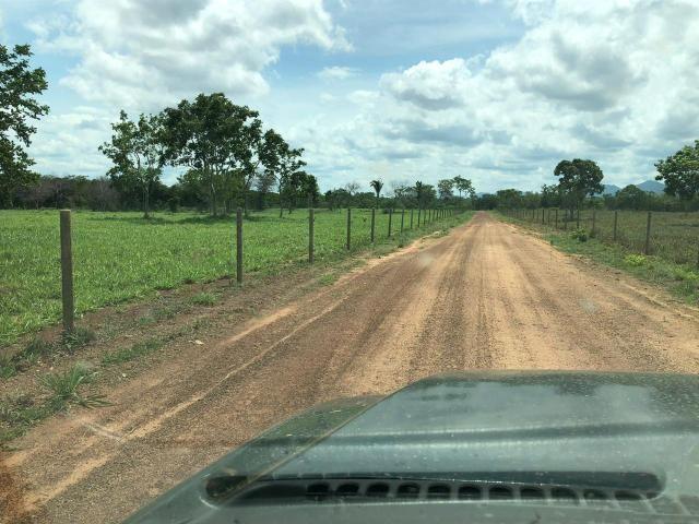 Fazenda 1.163 hectares em Livramento MT - Foto 9