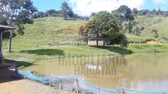 Fazenda de 100 alqueires paulistas, Campina Grande do Sul / PR - Foto 10