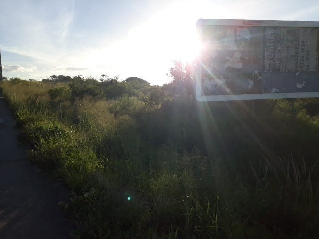 Ótima área com 4.4 hectares, em Caruaru-PE. Vende-se completa ou em partes.Aceita trocas! - Foto 10