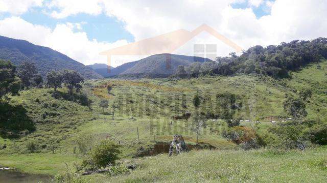 Fazenda de 100 alqueires paulistas, Campina Grande do Sul / PR - Foto 14