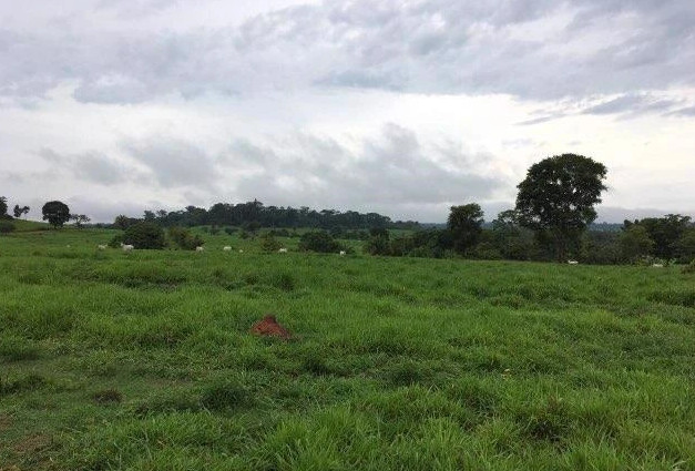 Fazendas parceladas - Foto 2