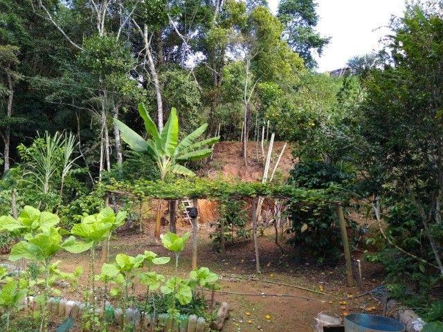 Chácara com casa e riacho na região Serrana  - Foto 15
