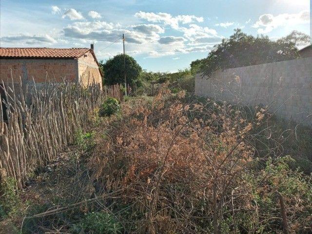 Vendo propriedade rural na Chapada Diamantina, Morro do Chapéu-Ba - Foto 10