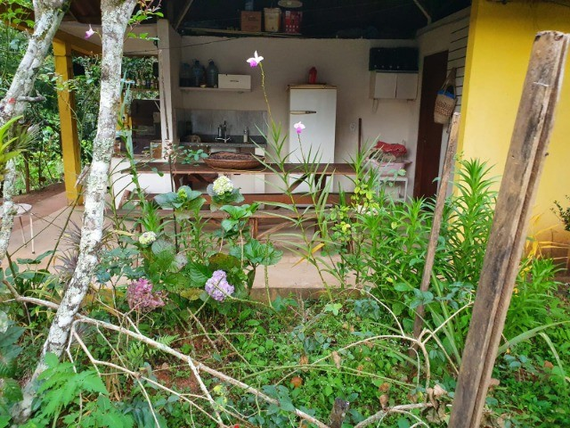 Chácara com casa e riacho na região Serrana  - Foto 11