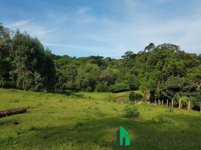 Linda Chácara em Bocaiuva do Sul - Foto 9