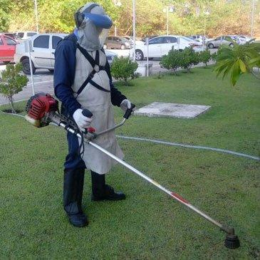 Limpeza de terreno - Foto 2