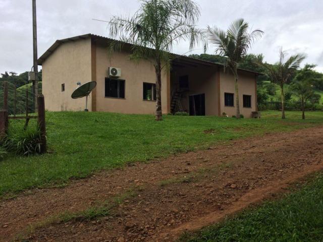 Fazenda rural à venda em Roncador - PR - 52 alqueires. - Foto 18