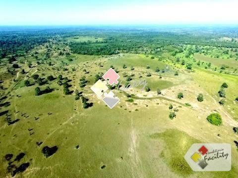 Fazenda rural à venda, zona rural, poconé - . - Foto 3