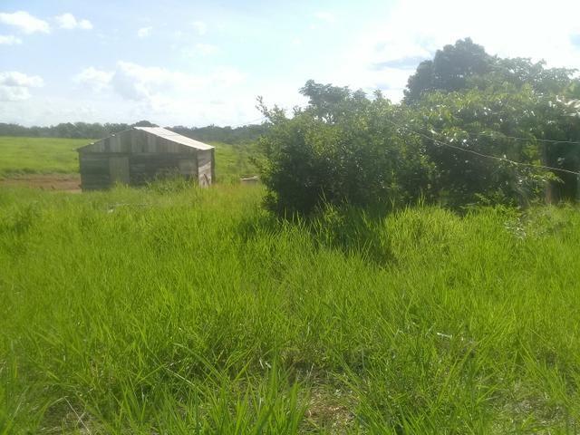 Vendo uma chácara no ramal do mutun no assentamento valteraço brahma - Foto 2