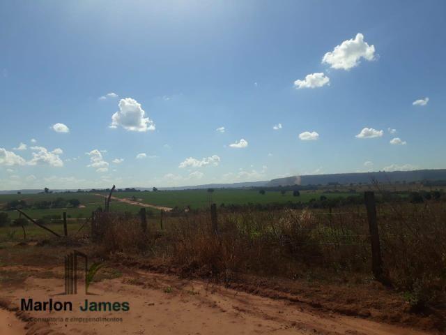 Fazenda para Plantio em Quirinópolis-GO! - Foto 18