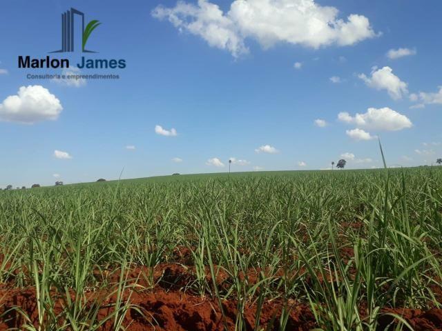 Fazenda para Plantio em Quirinópolis-GO! - Foto 6