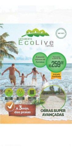 Loteamento Ecolive- Tapera Aquiraz !! - Foto 4