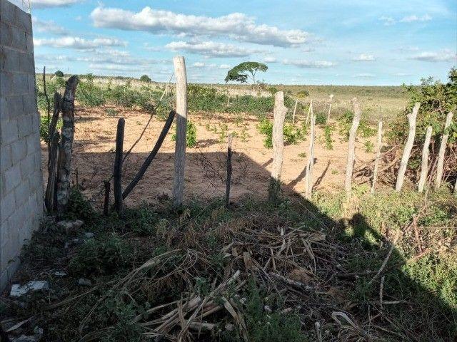 Vendo propriedade rural na Chapada Diamantina, Morro do Chapéu-Ba - Foto 3