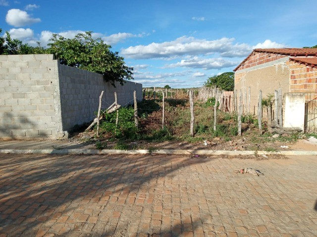 Vendo propriedade rural na Chapada Diamantina, Morro do Chapéu-Ba - Foto 16