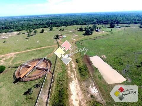 Fazenda rural à venda, zona rural, poconé - .