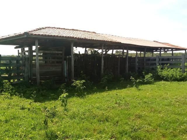 Fazenda para Pecuária 1.940 hectares na Estrada do Manso 50 km Cuiabá - Foto 6