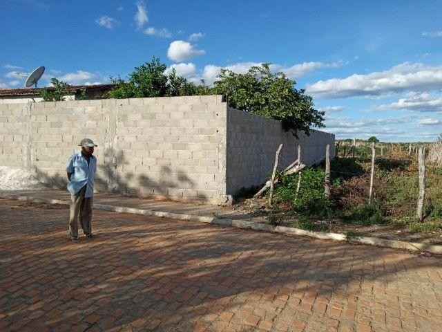 Vendo propriedade rural na Chapada Diamantina, Morro do Chapéu-Ba - Foto 15