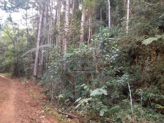 Terreno à venda em Fazenda inglesa, Petrópolis cod:3542 - Foto 4
