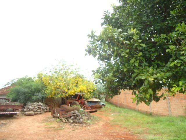 (TE1104) Terreno no Bairro Pillau, Santo Ângelo, RS - Foto 5