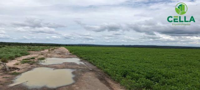 Fazenda / 4.639 ha (958 Alq.) / Balsas / Maranhão - Foto 3