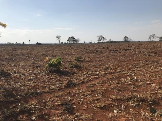Fazenda 1.240 hectares á venda em jangada - Foto 11