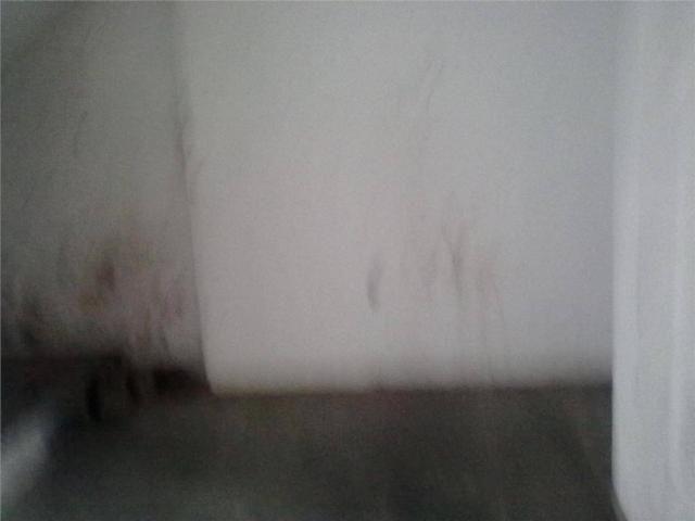 Alugue sem fiador, sem depósito - consulte nossos corretores - galpão para alugar, 1600 m² - Foto 12