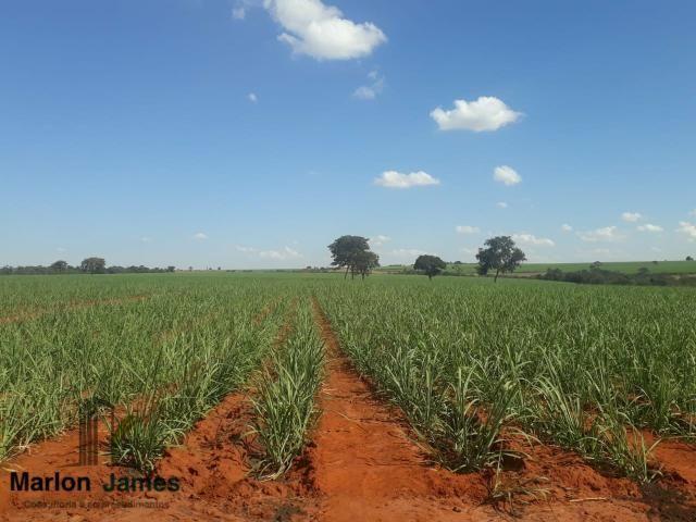 Fazenda para Plantio em Quirinópolis-GO!