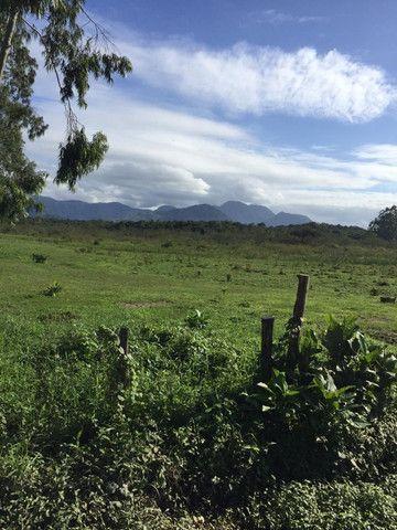 Área Industrial / Rural na Rodovia do Arroz com 22.760 m² - Foto 5