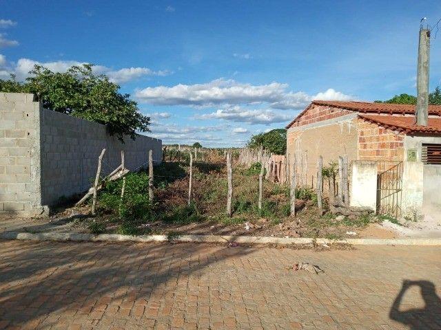 Vendo propriedade rural na Chapada Diamantina, Morro do Chapéu-Ba - Foto 2