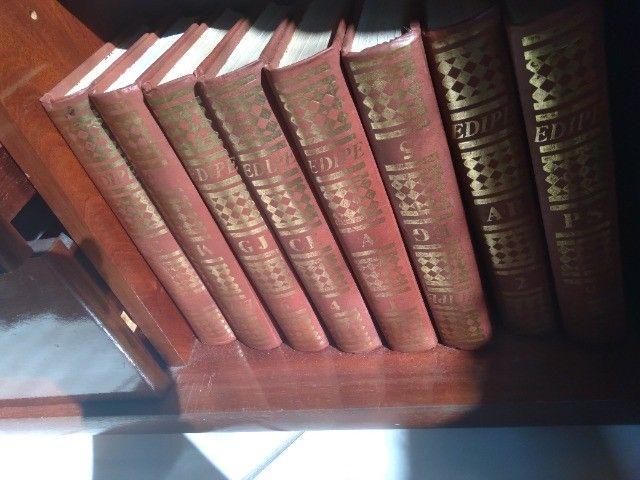 Vendo coleção de livros Edipe! Semi Novo!