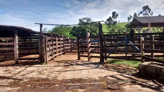 Fazenda Casemiro de Abreu 138 alqueires - Foto 3