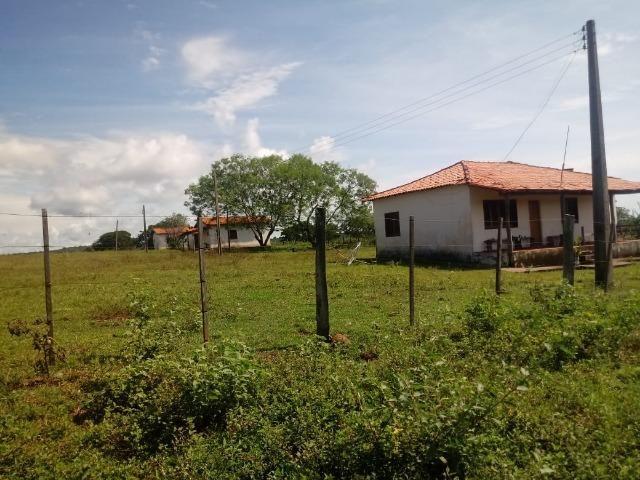 Fazenda para Pecuária 1.940 hectares na Estrada do Manso 50 km Cuiabá - Foto 4