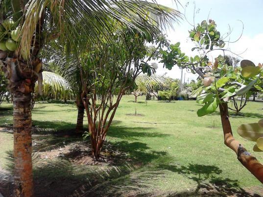 Vendo excelente terreno condomínio Praias do Sul I, próximo a Orla/Praia da Sarney - Foto 8