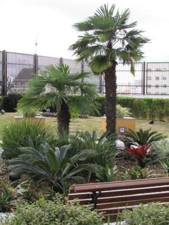 Oferta Union Imóveis, apartamento de alto padrão a venda, próximo ao centro, com 153 m²! - Foto 4