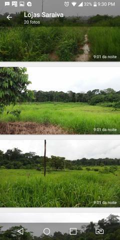Venda fazenda - Foto 4