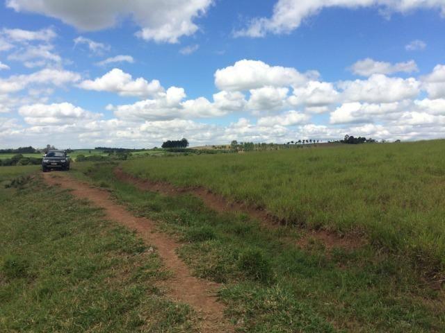 Fazenda 33 Alqueires, Região de Tatuí-Sp - Foto 4