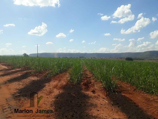 Fazenda para Plantio em Quirinópolis-GO! - Foto 15
