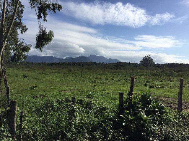 Área Industrial / Rural na Rodovia do Arroz com 22.760 m² - Foto 6