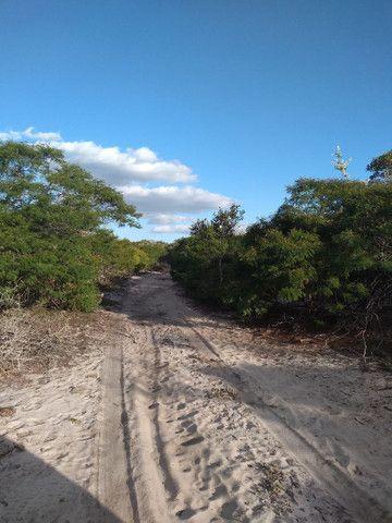 Propriedade rural  - Foto 2