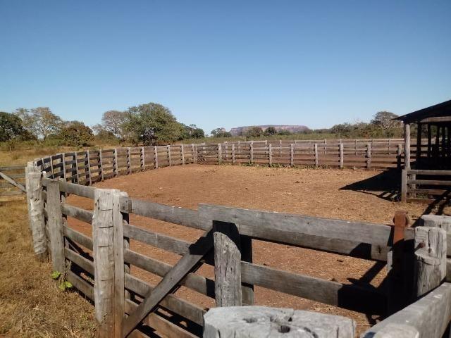 Fazenda para Pecuária 1.940 hectares na Estrada do Manso 50 km Cuiabá - Foto 7