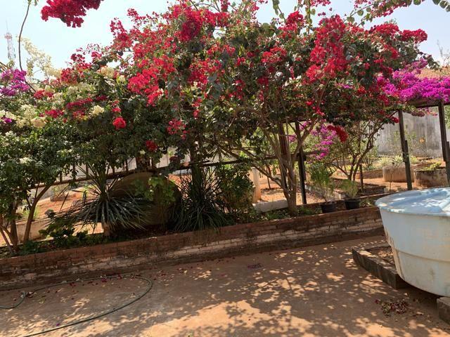 Oportunidade: Casa de 4qt, suite, laje lote 1000 metros no Setor de Mansões de Sobradinho - Foto 5