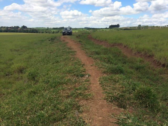 Fazenda 33 Alqueires, Região de Tatuí-Sp - Foto 5