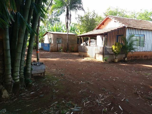 Vendo chácara de 7 hectares com 2 casas 1 cozinha caipira com fogão de lenha - Foto 20