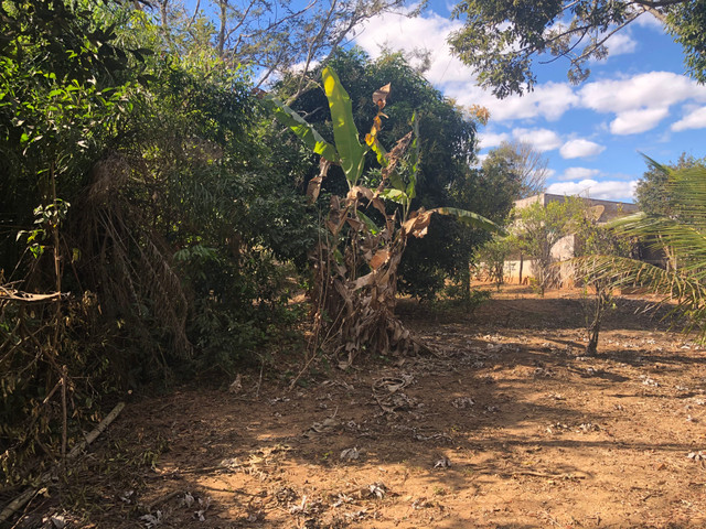 Alugo Rancho na comunidade Varjão - Foto 15