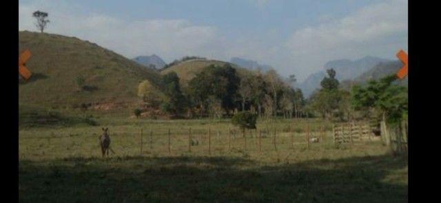 Ótimo Sitio 2 alqueires a 6 km de Castelo 550000 - Foto 2