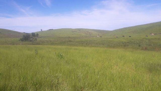 Fazenda Casemiro de Abreu 138 alqueires - Foto 5