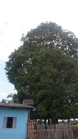 Fazenda 3288 ha terra Rosario Oeste MT braquearia 2020 cab boi R$ 6 mil reais p ha - Foto 16