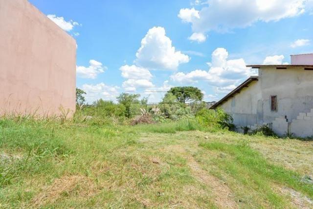 Terreno à venda em Aristocrata, São josé dos pinhais cod:146143 - Foto 5